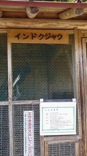 kenkou7.JPG